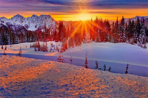 washington united states winter mountain forest tree snow