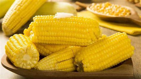 manfaat jagung rebus  ibu hamil corn   food