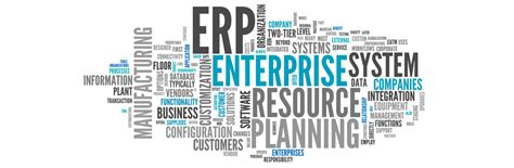 Erp Consultant by Erp Software Implementation Management Customization