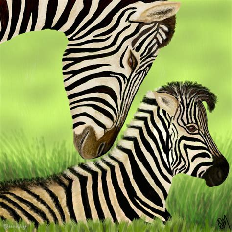 Baby Zebra baby zebra an animals speedpaint drawing by trumoon