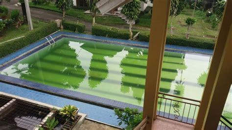 Villa Sejuk Pool Cijeruk Bogor villa dijual dipasarkan vila dipucak bogor pemandangan