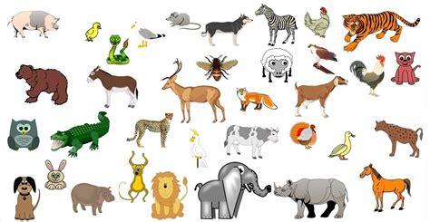 imagenes de animales gratis im 225 genes de todo tipo de animales banco de im 225 genes gratis