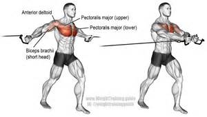 Best Weight Bench Workouts Cable Cross Over Exercise Instructions And Video Weight