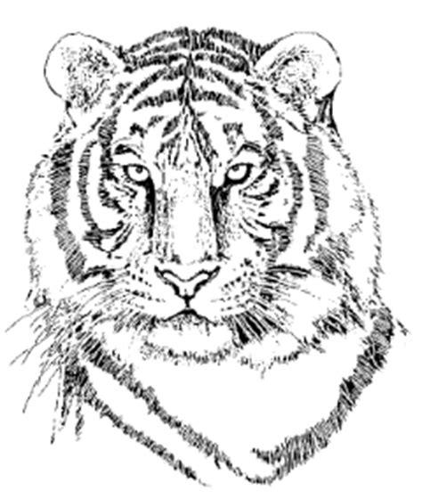 desain gambar harimau desa rajadesa