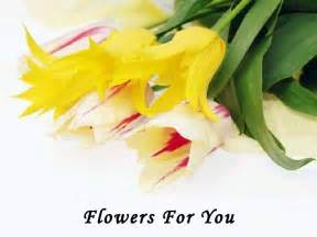 flowers for you youtube