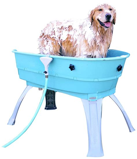 bathtub dog selecting the best dog grooming tubs a detailed guide