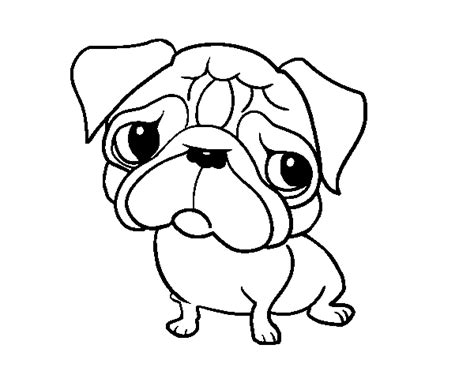 enlightened pugs coloring book books pug coloring page coloringcrew