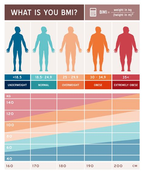 Things You Should About Your Bmi by How To Calculate Your Bmi And What It Is Used For