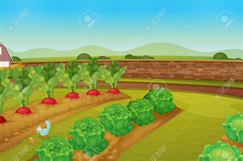 vegetables clipart vegetable gardening pencil and in
