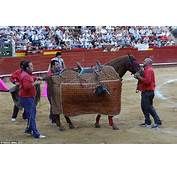 Matador Abandons His Stricken Blindfolded Horse As It Is