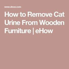 Removing Cat Urine From Upholstery 1000 ideas about urine stains on pet urine