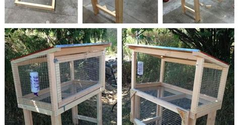 Hutch Twitch Our Diy Rabbit Hutch Our Bunny Is Going To It