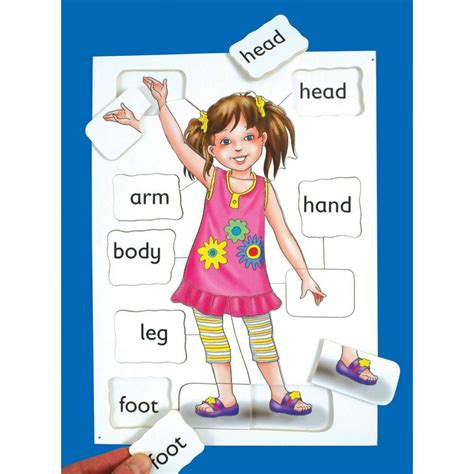 Puzzle Part parts wooden puzzle from early years resources uk