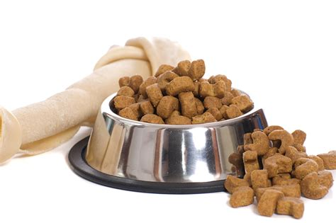 how should a puppy be on puppy food how many meals is enough petreviewer