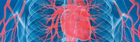 185 cambridge floor 2 boston ma 02114 home cardiovascular research labcardiovascular research lab
