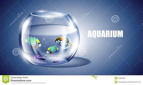 aquarium design eps vector fish in aquarium royalty free stock image image