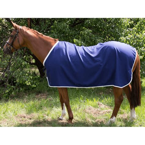 cotton drill horse rug rescue rugs