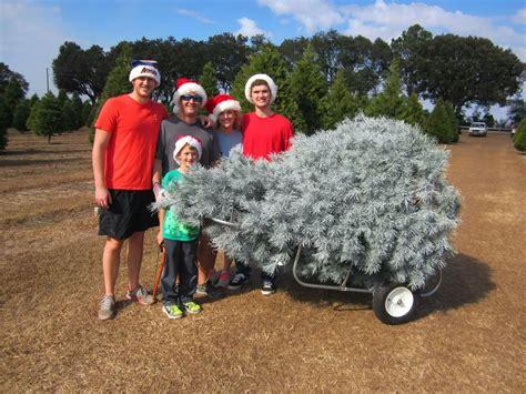 100 christmas tree farm huntsville al bygone walla