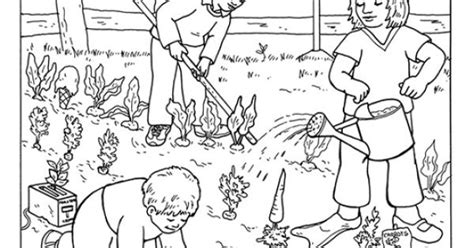 coloring page vegetable garden coloring page of a vegetable garden food
