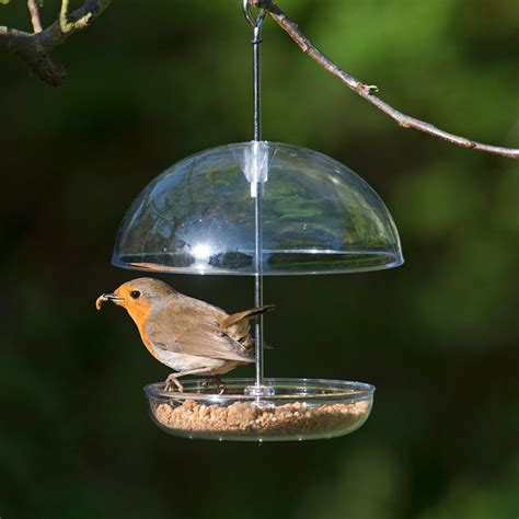 i love robins dome feeder rspb bird feeders rspb shop