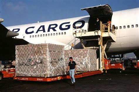 air cargo service has the potential to further diversify