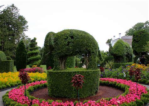 green animals topiary garden newport ri diaries of a