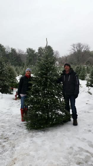 3 rules for keeping your christmas tree fresh