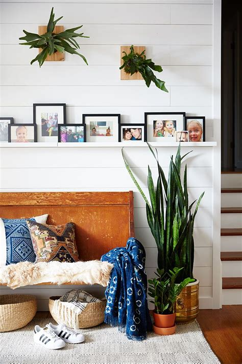 indoor plant options for apartments cozy bliss 25 best ideas about snake plant on pinterest indoor