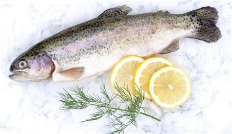 Does Fish Detox The by The Contamination In Fish Which Are The And Bad