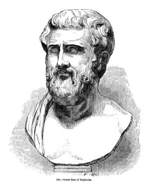 The Perfect Analysis of Important Quotes from Sophocles