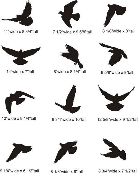 small black bird tattoos flying dove silhouette pictures bird tattoos