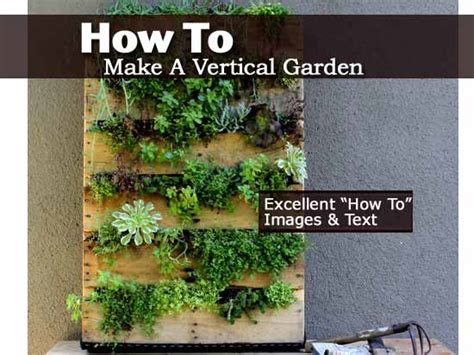 How To Start A Vertical Garden How To Make A Vertical Garden