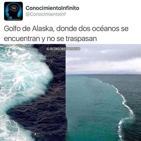 de donde no se 8492841664 en el golfo de alaska se juntan dos oc 233 anos donde el agua no se mezclan el profesor ken bruland