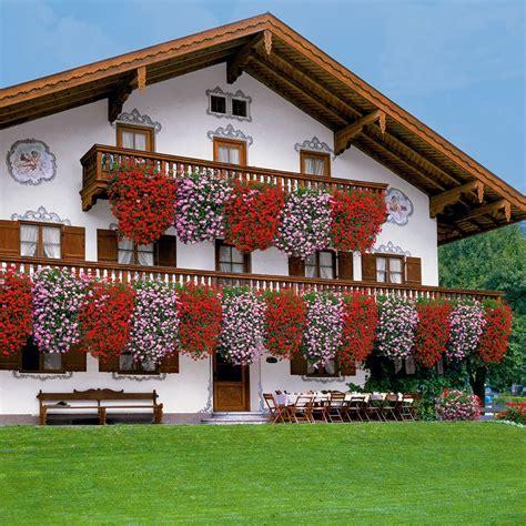 Gutschein Ahrens Und Sieberz 3758 by Echte Tiroler H 228 Nge Geranien Tirolia Quot Tiroler Feuer