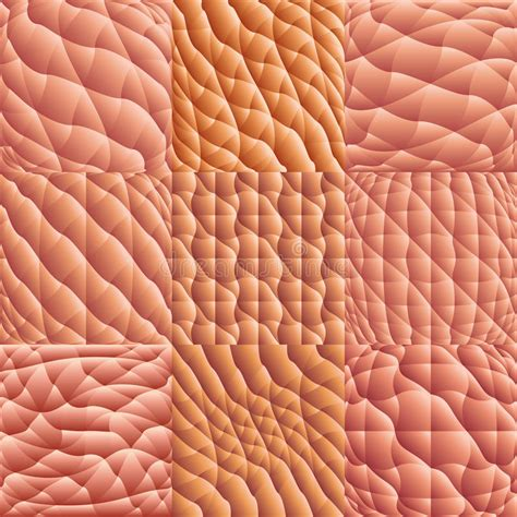 human skin macro vector stock photo image 18771970 human skin macro vector stock photo image 18771970
