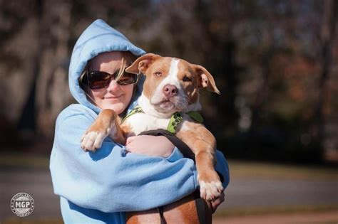 Operation Paws For Homes by Operation Paws For Homes Nonprofit In Alexandria Va