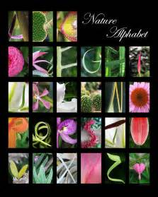 Garden Arbor Plans nature alphabet digital art by laila kujala