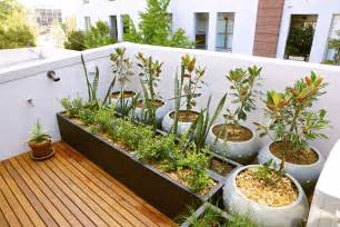 With raised wooden bed and large vase ideas vegetable garden ideas
