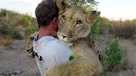 black man s free hugs project shifts love toward cops in humans amazing friendship with lion youtube