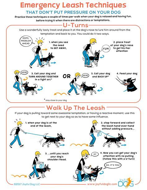 pattern games leslie mcdevitt emergency leash techniques joyful dog