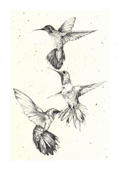 black and white hummingbird tattoo designs three black and white hummingbird flock design