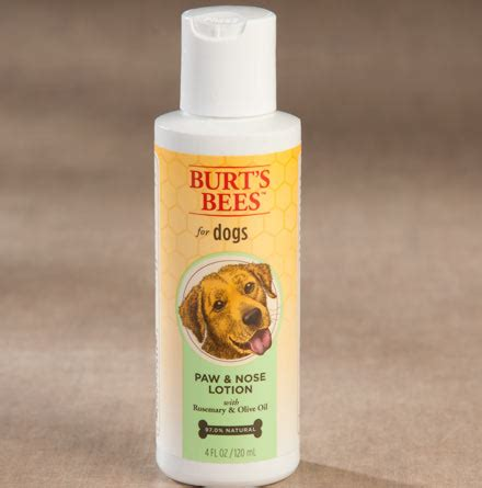 burt s bees for dogs burt s bees paw nose lotion for dogs paw care from drsfostersmith