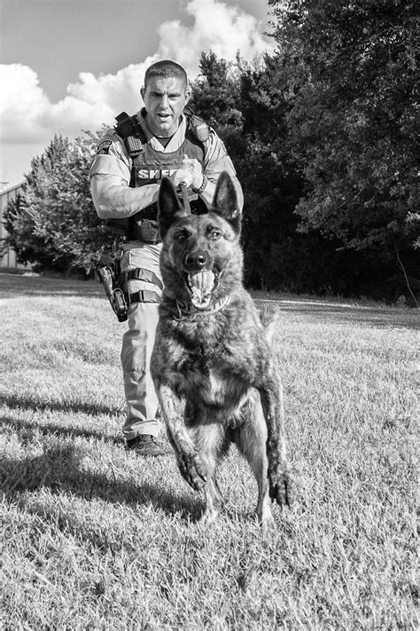 Photograph Sheriff Police K9 by phil crabtree on 500px
