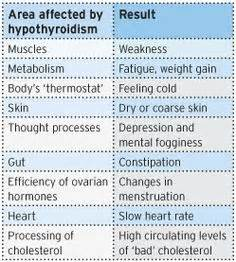 7 supplements to subdue hypothyroidism why easy bruising is so common in hypothyroidism many