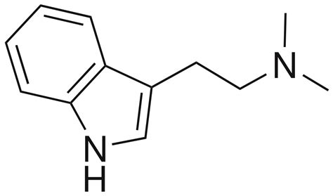 n n dimethyltryptamine wikipedia