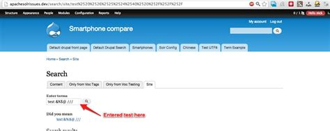 drupal theme query string search query string gets double encoded when core search