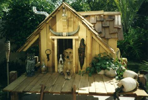 dog pet build custom dog house  wooden  plastic