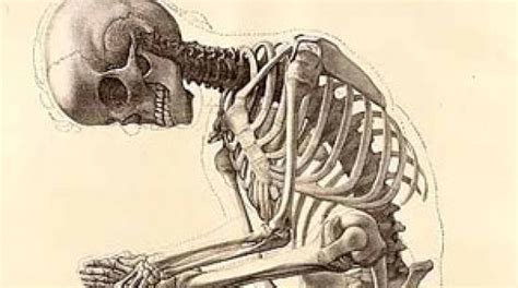 imagenes artisticas cuerpo humano medicina en el lenguaje de la gente el arte de ense 209 ar