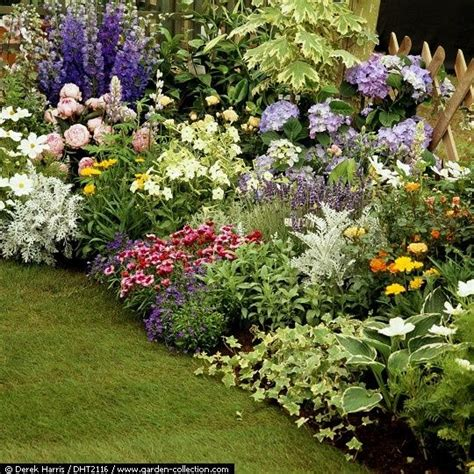 Hosta Garden Layout Ideas Google Search Hostas Hosta Garden Layout