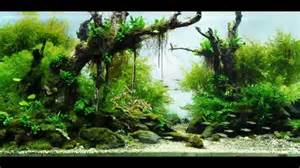 most beautiful aquascapes underwater landscapes